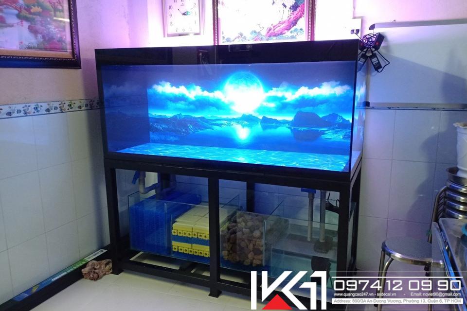 Hồ cá công nghệ 4 lớp giá rẻ HCM